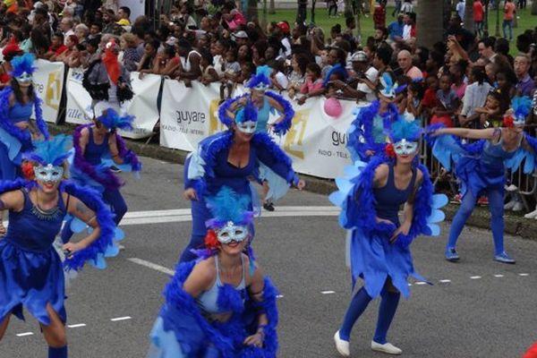 Les oiseaux bleus de la Parade Cayenne