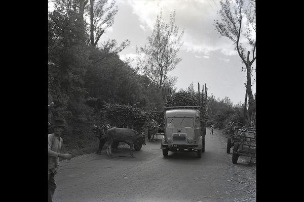 Vos photo notre histoire La Réunion - scène de rue