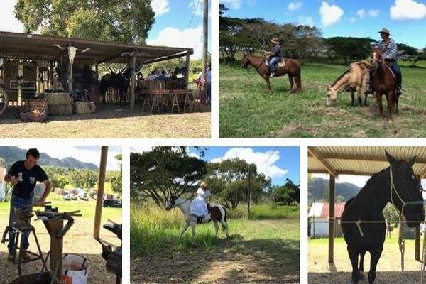 Mois du patrimoine à Païta,thème du cheval, 14 septembre 2019