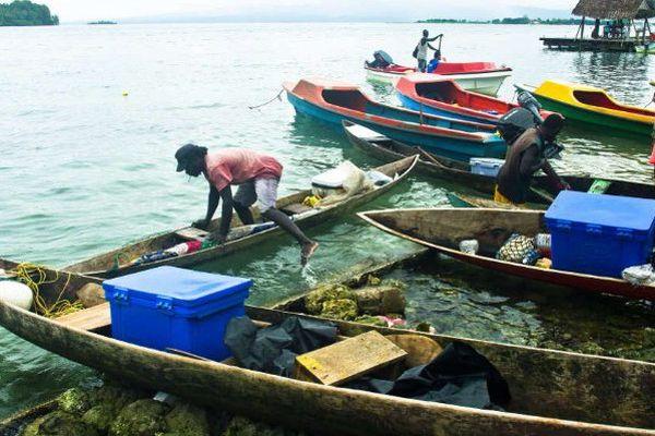 Plusieurs mesures d'encadrement de la pêche côtière ont été étudiées par les directeurs de pêche des pays océaniens