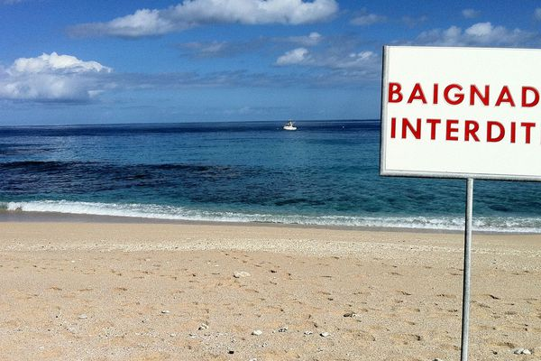 Baignade interdite et risque requin