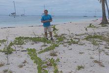 Jean-François Butaud, botaniste, sur la plage publique de Tahiamanu, à Moorea.