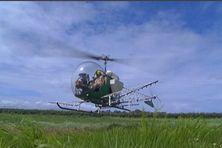 Un hélicoptère d'épandage aérien à la Martinique.