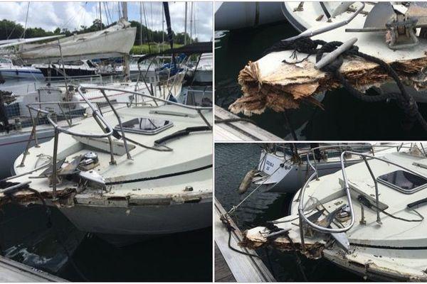 bateau accident