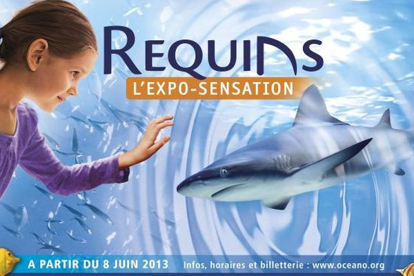 expo requin Monaco