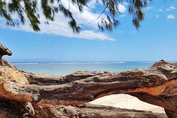 Bord du lagon de La Réunion
