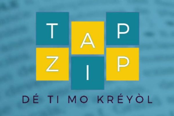 Logo Tap Zip