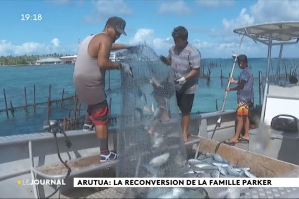 Arutua : sauvé par le parc... à poissons