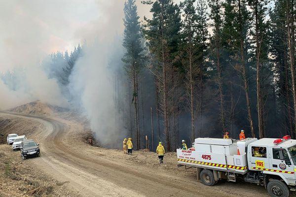 Nouvelle Zélande feu incendie