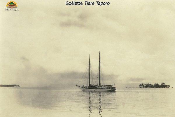 Goélette