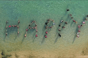 """Happy Tahiti"" aussi sur Polynésie 1ère"