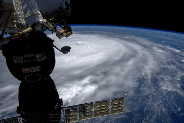 Irma cover article iss
