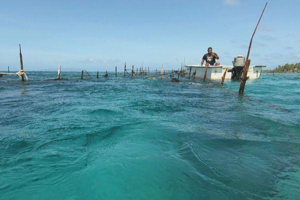 Matairui Raitui : pêcheur aux Tuamotu depuis 30 ans