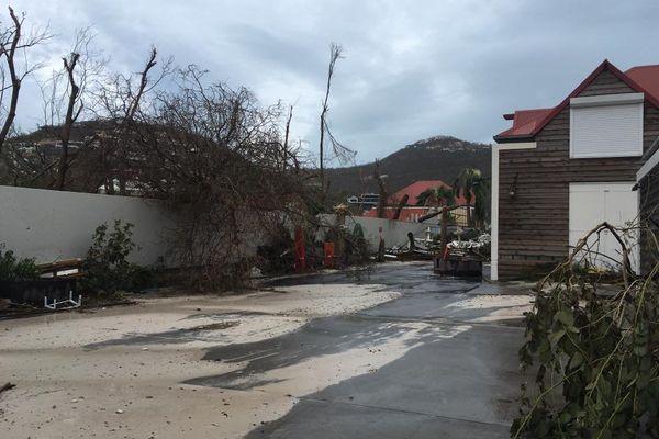 Saint-Barth Irma 8