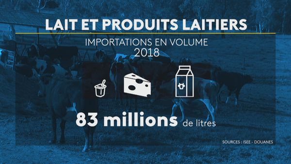 Filière lait importations en volume
