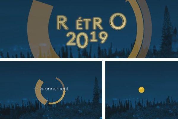 Rétro 2019 : l'environnement