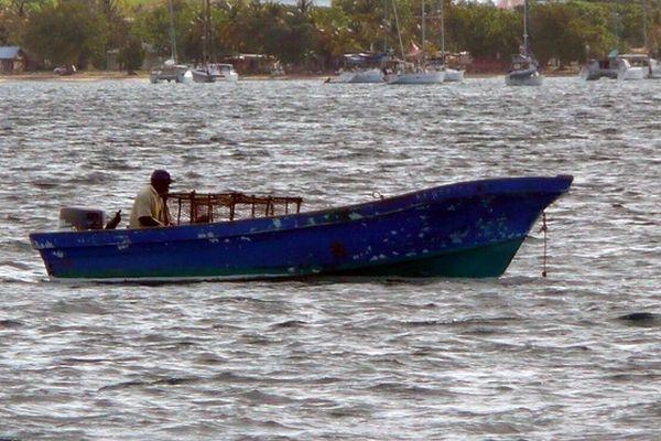 Pêcheur Martinique