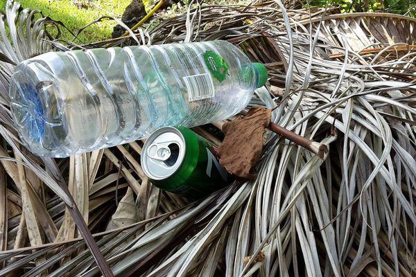 les déchets polluant la nature