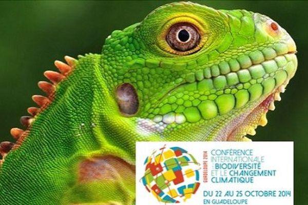 Conférence biodiversité