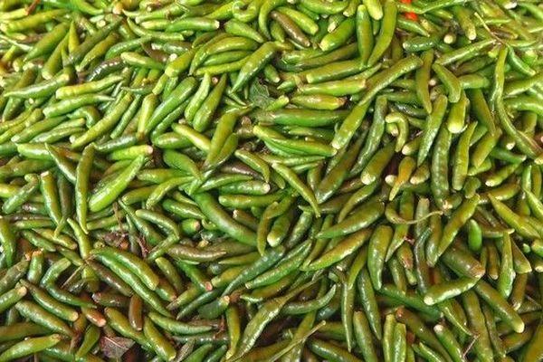 chaleur et prix des légumes piments marché du Chaudron 100319