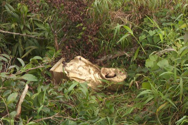Statue de Schoelcher déboulonnée Basse-Terre retrouvée dans les Mamelles