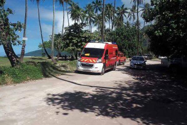 Moorea : une femme blessée à la tête par une noix de coco