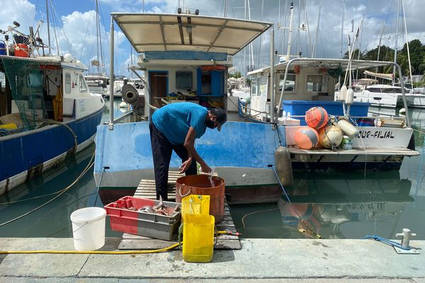 Les marins-pêcheurs souffrent du ralentissement de l'activité