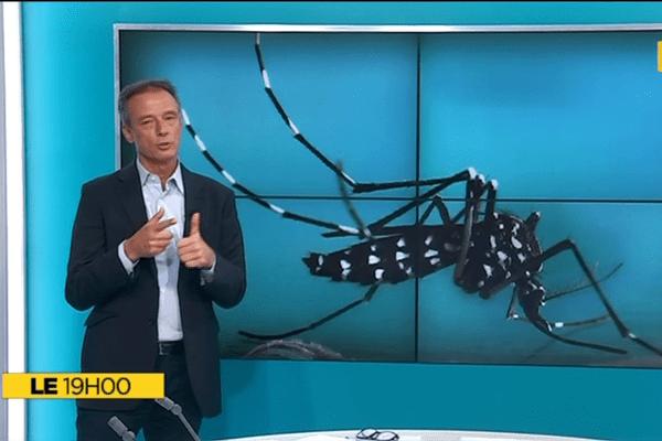Le+ du 19h : Le premier cas de zika à La Réunion
