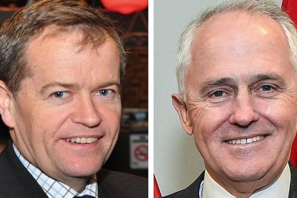 Australie : les deux candidats aux législatives et aux sénatoriales