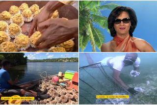 Décryptage L'oursin, le caviar des Antilles