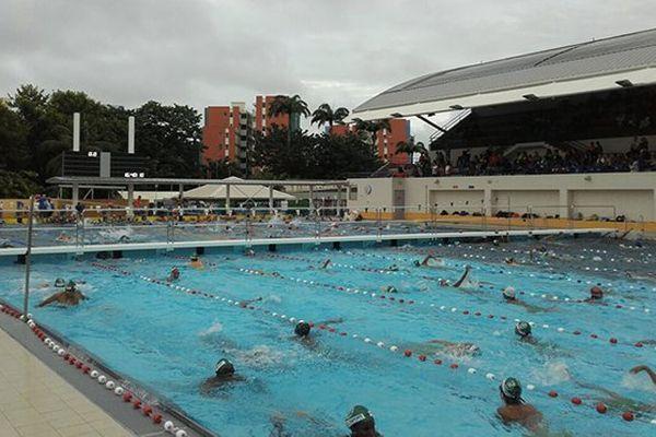 Nageurs à la piscine