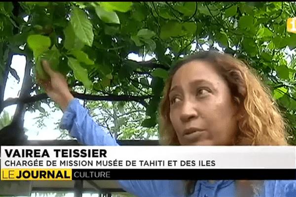 Rénovation du musée de Tahiti et des îles