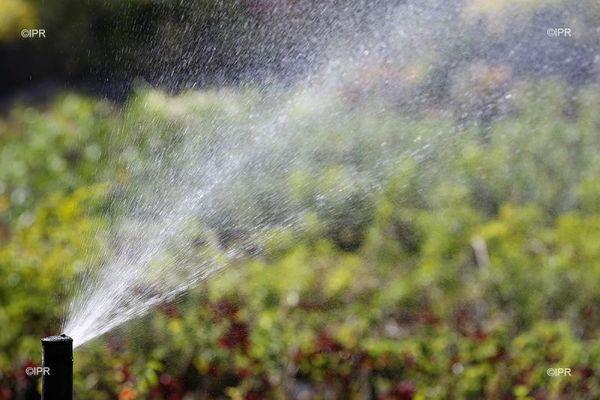 Agriculture manque d'eau dans l'ouest