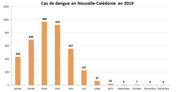 Cas de dengue en 2019