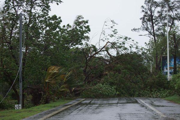 Doumile cyclone