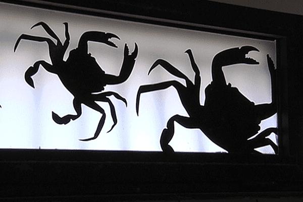 Crabes de palétuvier