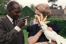 Léopold Sedar Senghor, ancien président du Sénégal, académicien et poète pose avec sa femme Colette, le 11 mai 1989 dans leur jardin à Verson. Colette Senghor tient sur son bras le cacatoès blanc offert par son mari après la mort accidentelle de leur fils en 1981.