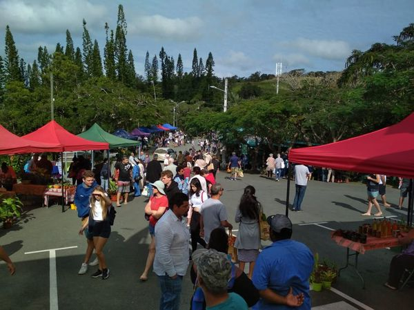 Marché de Farino, 9 août, hommage à Mamie Fogliani