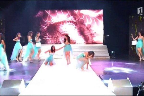 Miss Réunion 2015 : les chutes