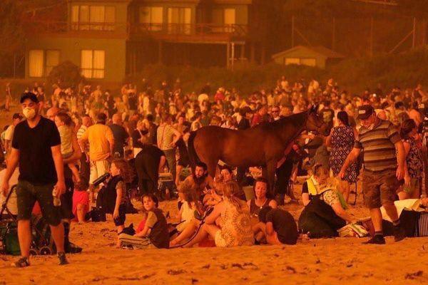 Les images apocalyptiques des feux en Australie