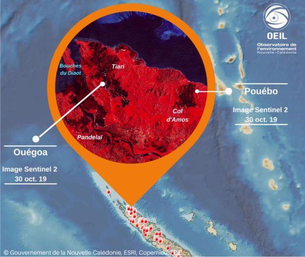 Exemple de surveillance des feux par l'Observatoire de l'environnement