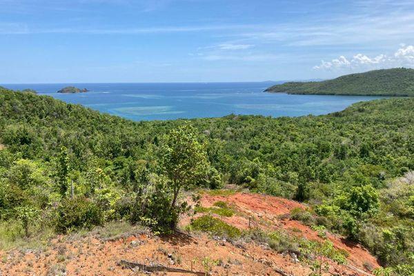 Baie du trésor Trinité