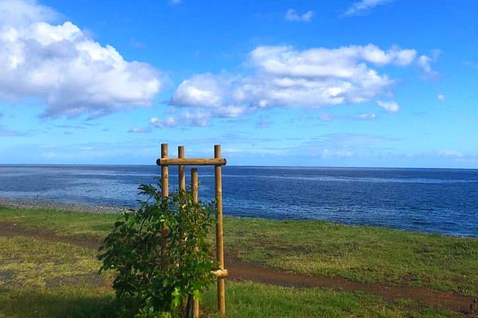 La Réunion : une belle journée, malgré quelques nuages - Réunion la 1ère - Outre-mer la 1ère