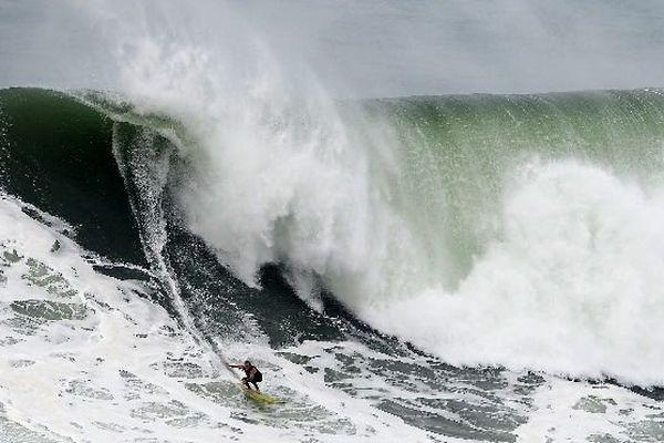 surf vague Nazaré McNamara