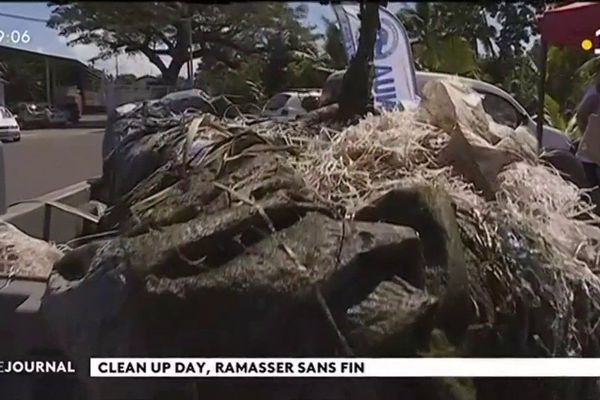 Clean Up Day : lève-toi et ramasse !