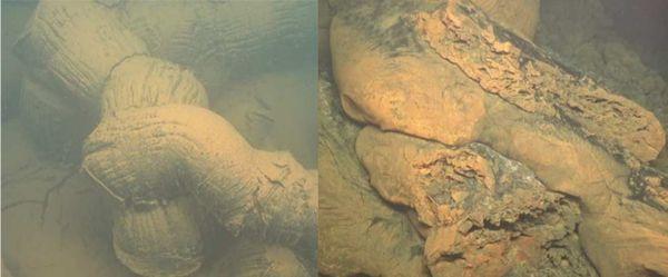 Tubes de lave volcan sous-marin Mayotte