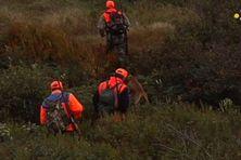 240 chasseurs sont inscrits dans la première bordée
