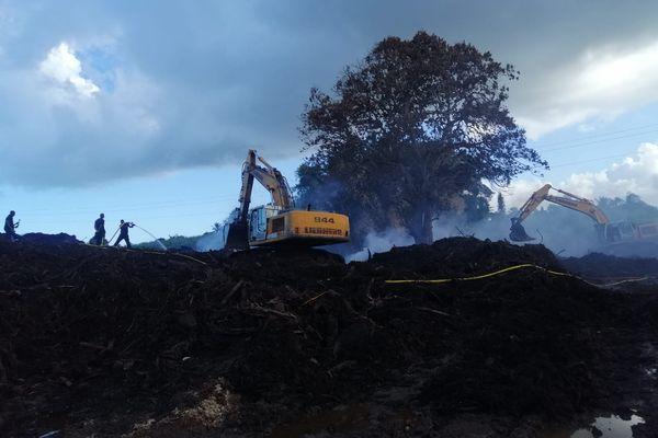 Incendie à la décharge de déchets verts de Dorville Baie-Mahault