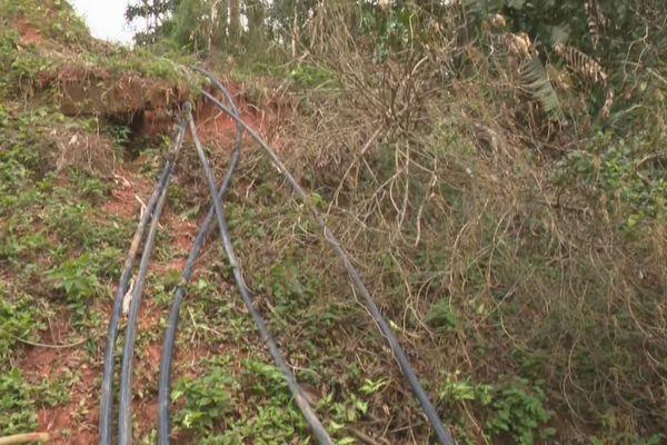 Un réseau de canalisations en sauterelle à Cacao