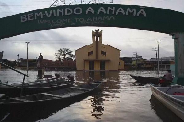 Anama sous les eaux dans l'état d'Amazonas au Brésil
